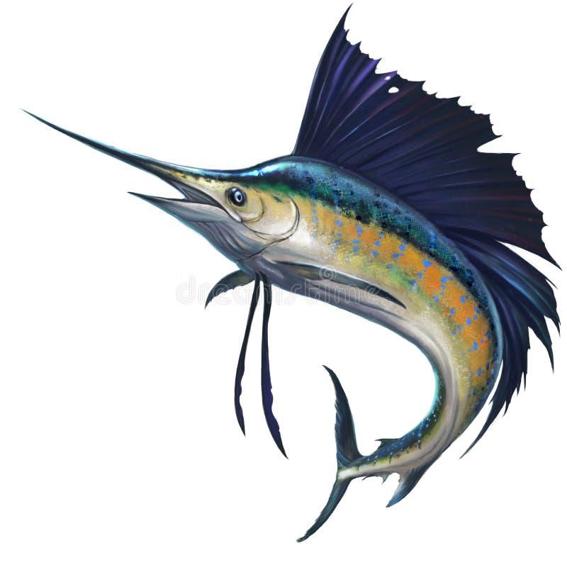 Sailfish na tle ilustracji