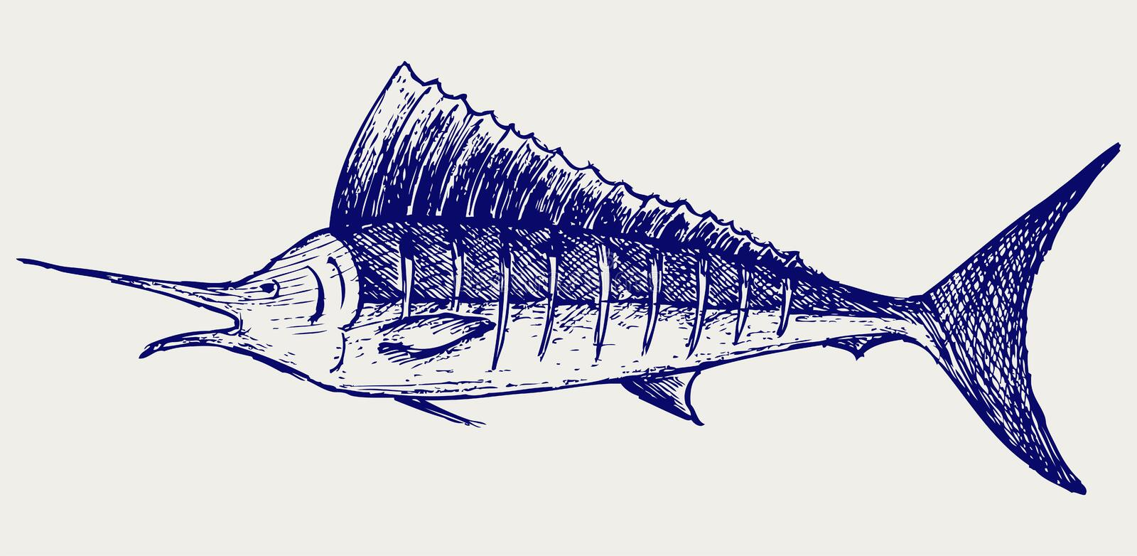 Sailfishsaltwaterfisk stock illustrationer