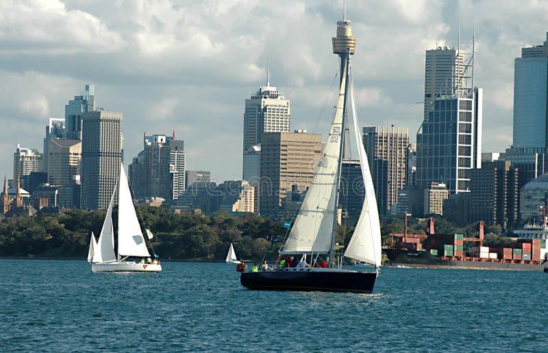 sailing Сидней гавани шлюпок стоковые изображения rf