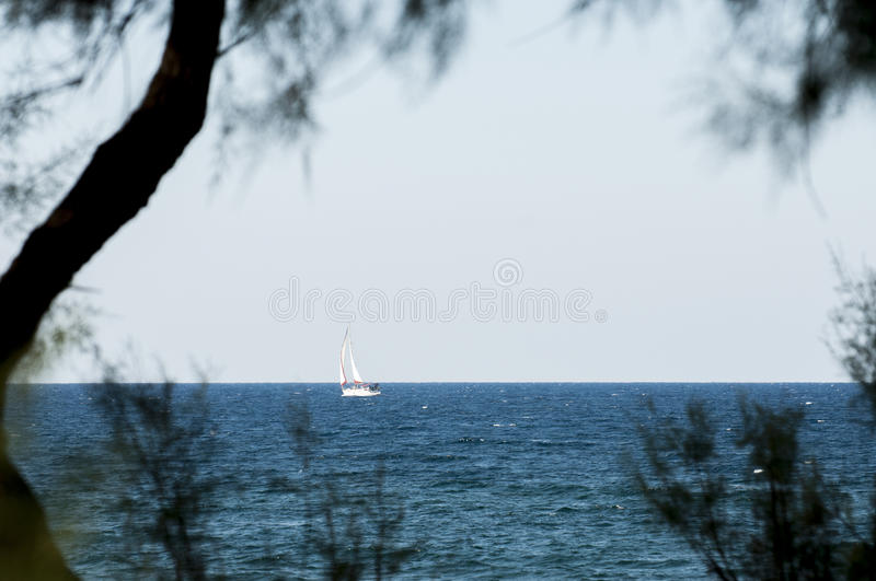 Download Sailing stock image. Image of seashore, white, navigation - 39501623