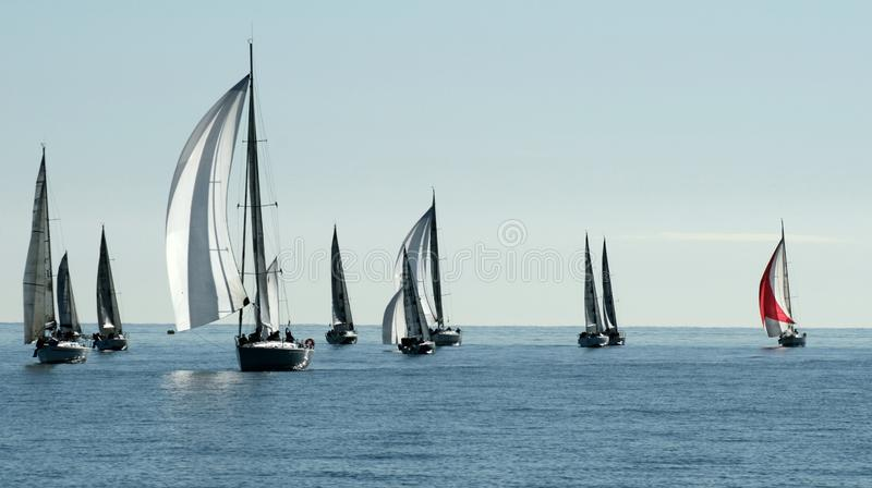 Sailing boat race in the bay of Cannes royalty free stock photo