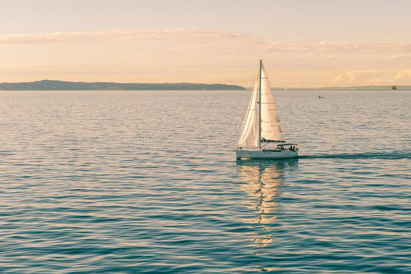 Sailing boat ship yachts with white sails stock images