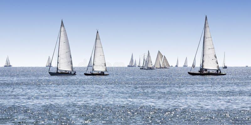 Sailing boats. On the lake stock photo