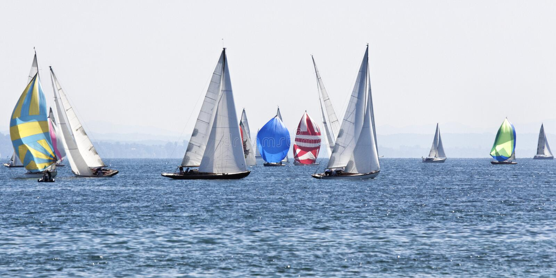Sailing boats. On the lake royalty free stock photo
