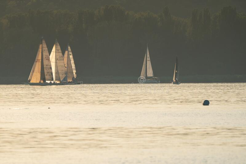 Sailing boats compete on 52.nd Kékszalag royalty free stock images