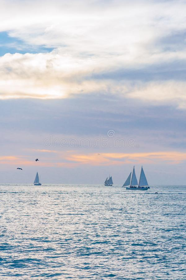 Sailing boats traveling in the sea under sunset, in Key West, Fl royalty free stock image