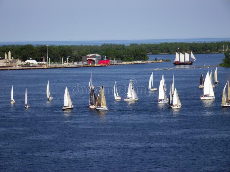 Sailing boats. Yacht racing in Lake Ontario, Toronto, Canada. Sailing boats or yacht racing in Lake Ontario, Downtown, Toronto, Ontario, Canada stock photography