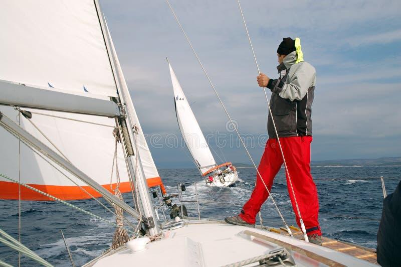 Sailing III royalty free stock photo