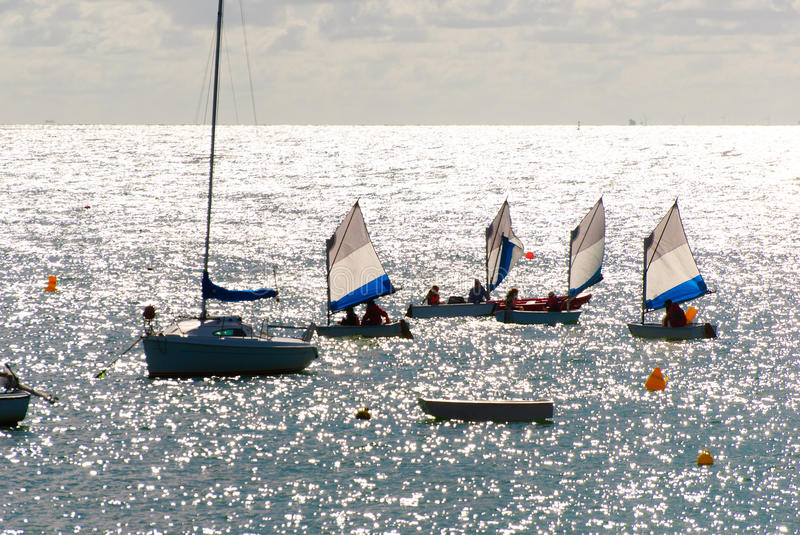 Sailing lesson at sea. Group of little boats following a sailing lesson at sea stock image