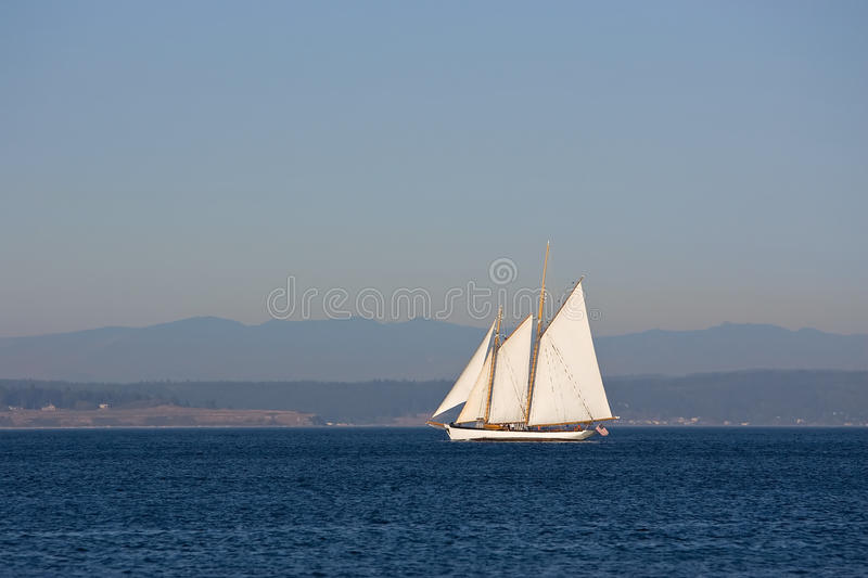 Download Sailing in Puget Sound stock photo. Image of sound, fullsail - 11184784