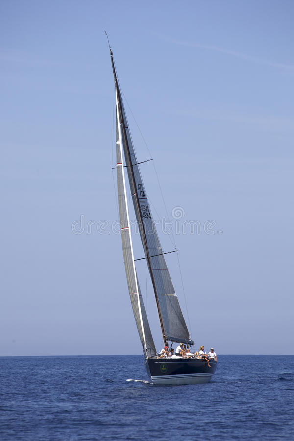 Free Sailing Race Royalty Free Stock Photo - 13402175