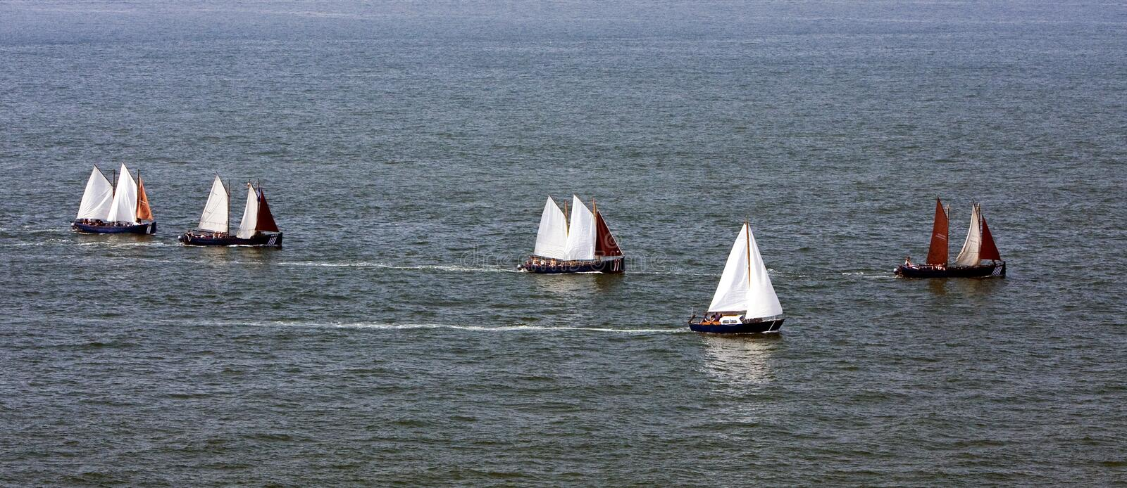 Download Sailing on sea stock image. Image of sailboat, wind, full - 10061255