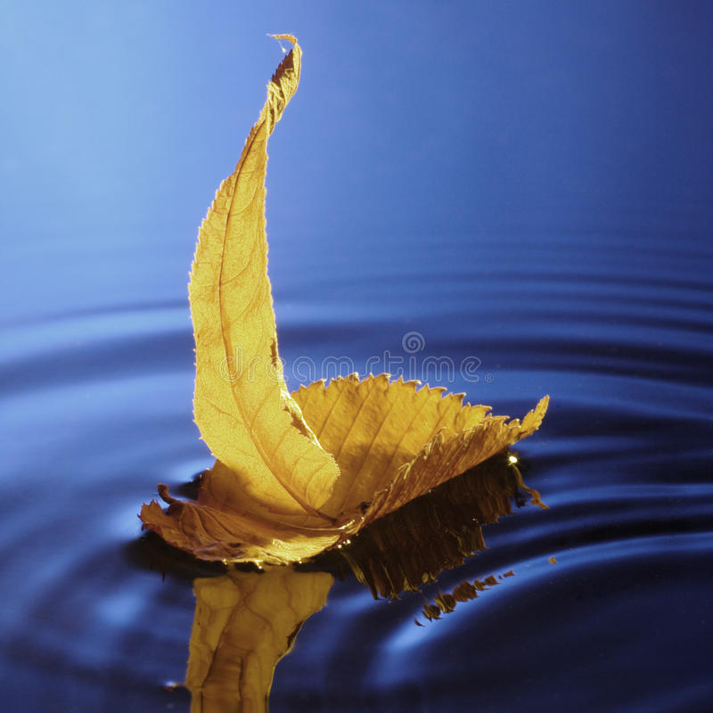 Download Sailing ship stock photo. Image of craft, autumn, quiet - 10469372