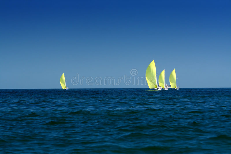 Sailing sport / regatta. Sailing yachts with spinnakers / yachting sport royalty free stock photo