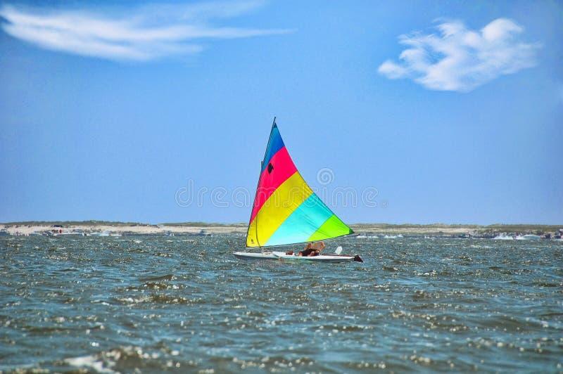 Sailing Sunfish royalty free stock photos