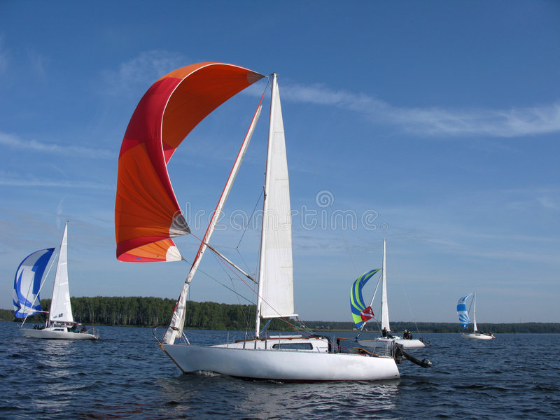 Sailing with white spinnaker royalty free stock photography