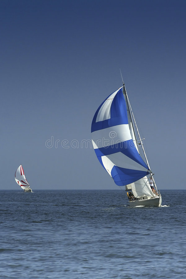 Sailing. The winner and losed royalty free stock images