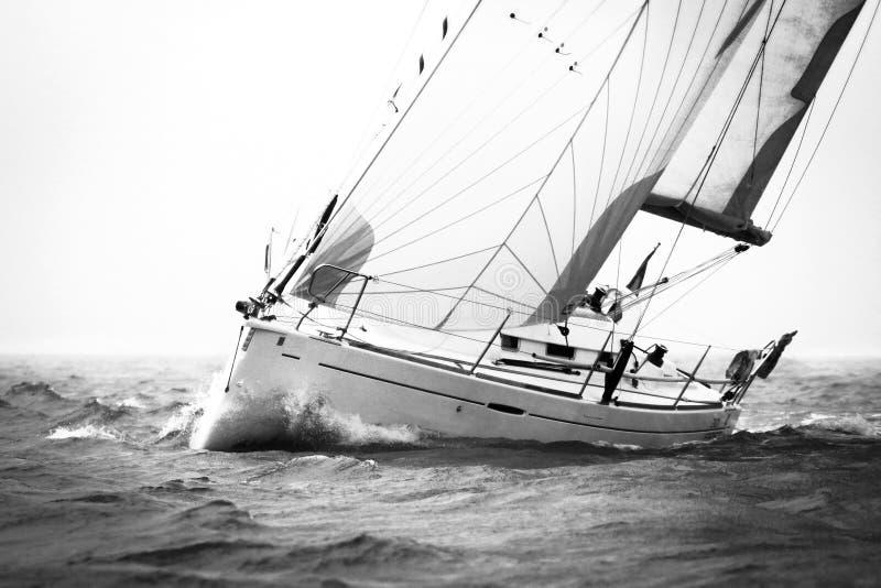 Sailingboat branco durante a regata imagens de stock royalty free