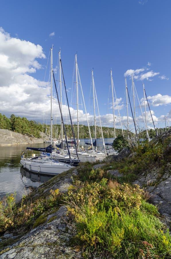Sailingboats ankrade den Napoleonviken Stockholm skärgården royaltyfri bild