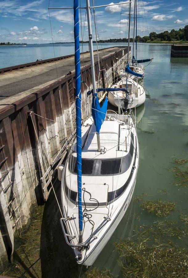 Sails boats royalty free stock photography