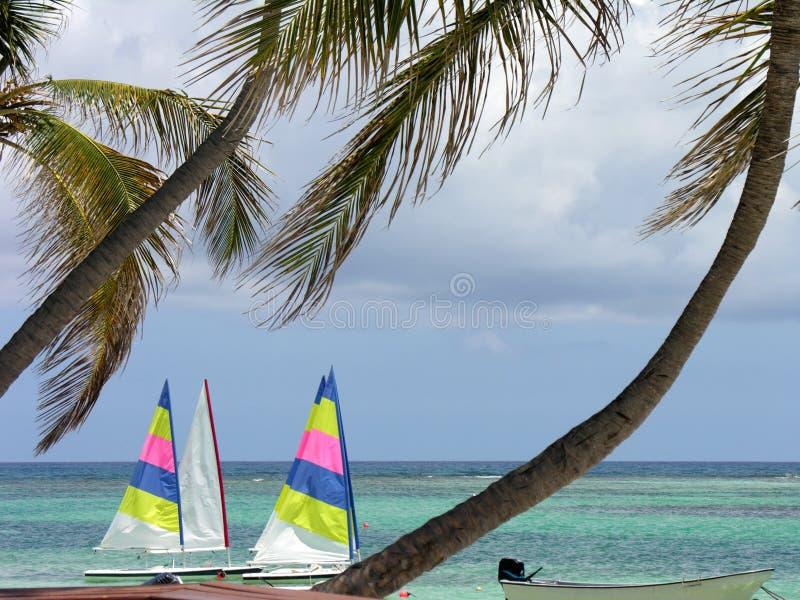 Sails on Caribbean Sea royalty free stock photography