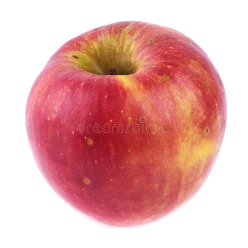 Sain naturel d'isolement par pomme simple libre de GMO photographie stock