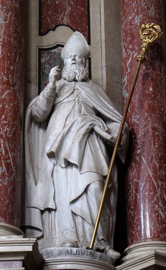 Saint Albuinus imagem de stock