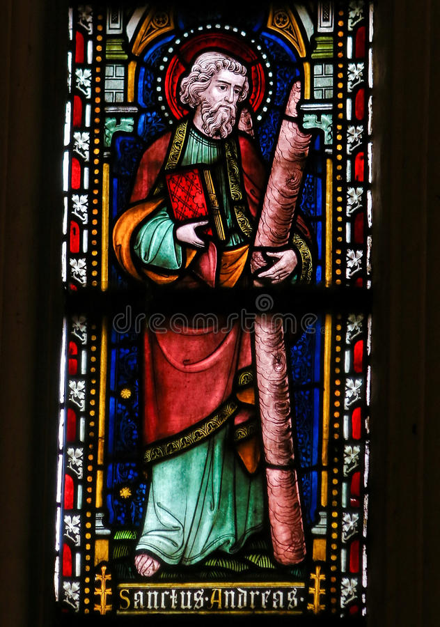 Saint Andrew - Stained Glass in Sint Truiden Cathedral royalty free stock photo