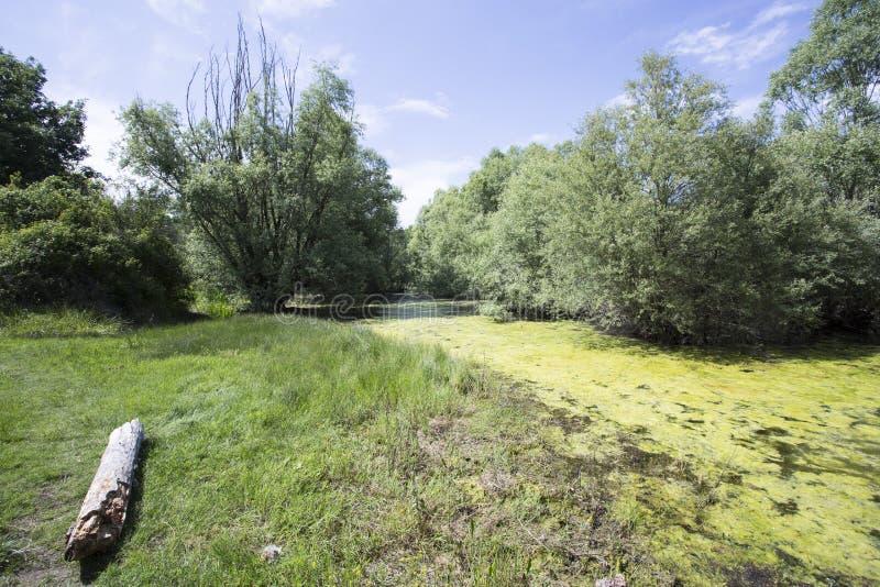 Saint Cassien de lac images stock