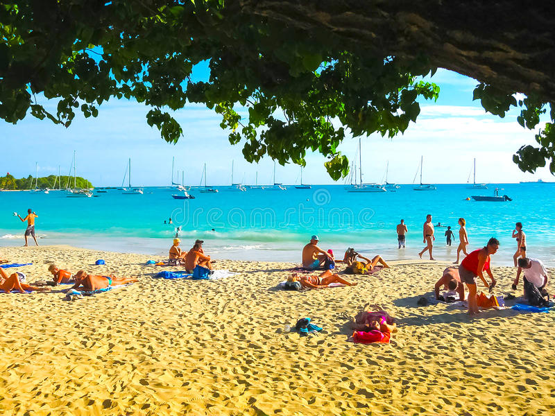 Saint Francois Guadeloupe - Februari 09, 2013: Anse Champagnestrand i Saint Francois, Guadeloupe som är karibisk fotografering för bildbyråer
