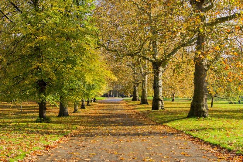 Saint Jame's Park-vy, London royaltyfria foton