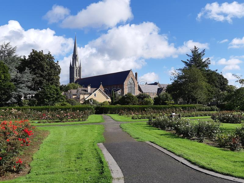 Saint John`s Church from Rose Garden in Tralee, Ireland. One sunny day in the Rose Garden in Tralee, Ireland stock image