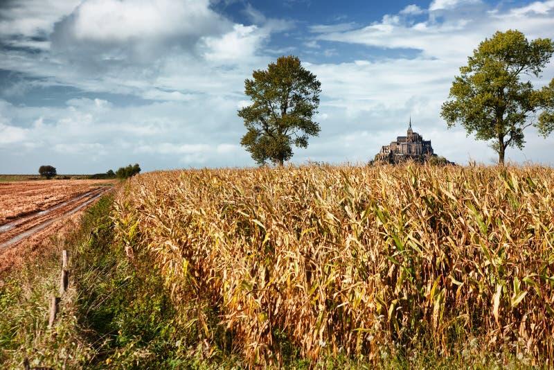 Saint Michel de Mont et champ de maïs en Normandie, France image stock