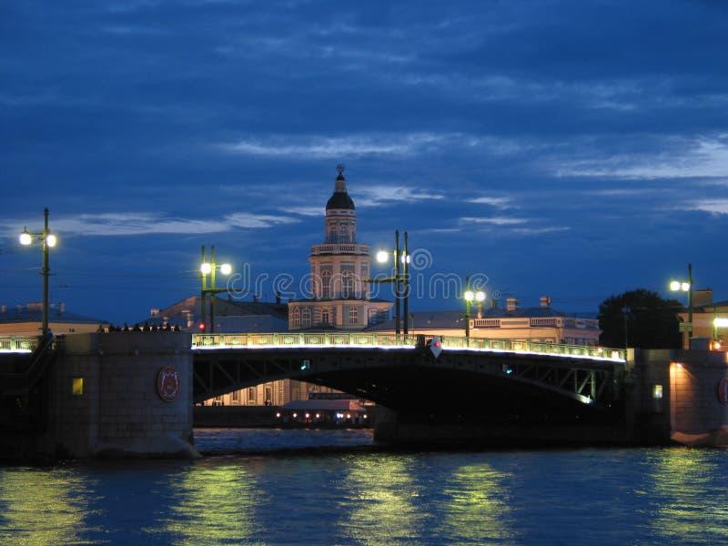 Download Saint Petersburg Bridge stock photo. Image of bridge, night - 8368144