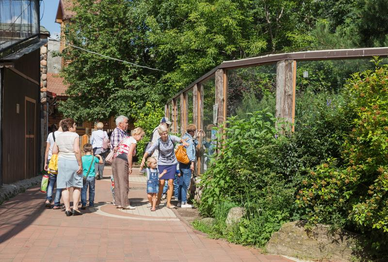 People in zoo on a summer day royalty free stock photos