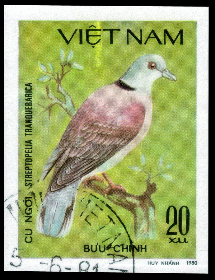 Saint Petersburg Russia May 31 2020 Postage Stamp Issued In The Vietnam With The Image Of The Red Turtle Dove Streptopelia Editorial Photography Image Of Aged Historic 185696687