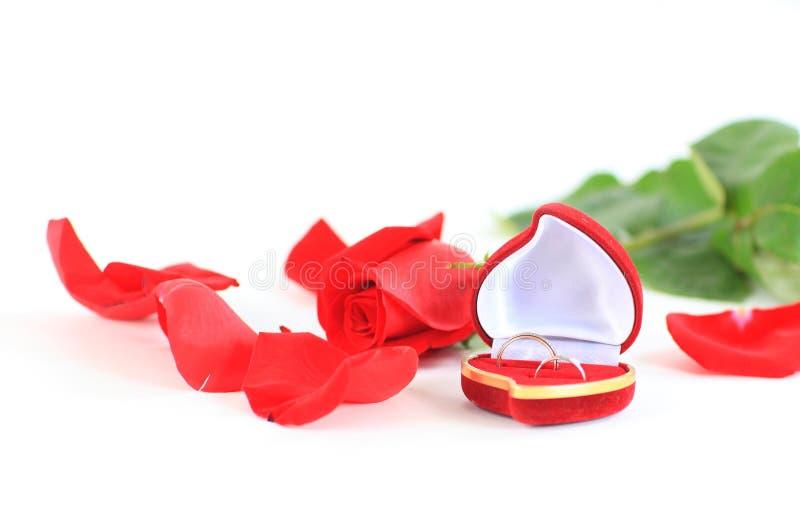 Saint-Valentin d'isolement photos libres de droits