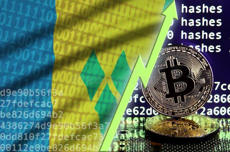 Saint Vincent och Grenadinerna flagga och stigande grön pil på bitcoin som bryter skärmen och två fysiska guld- bitcoins royaltyfri illustrationer