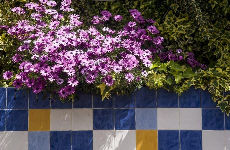 Saisies au jardin et aux tuiles décoratives dehors images stock