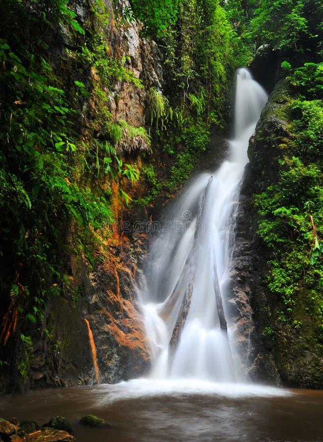 Saison d'automne de l'eau au printemps photographie stock libre de droits
