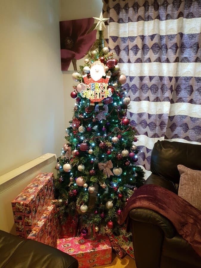 Saison de Noël photo libre de droits