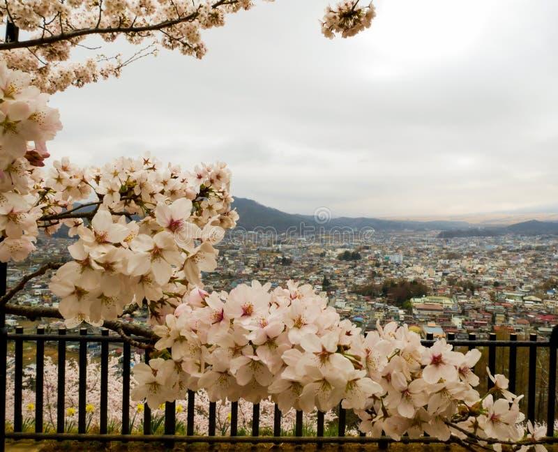 Saison de Sakura au printemps avec des cerisiers, Japon image libre de droits