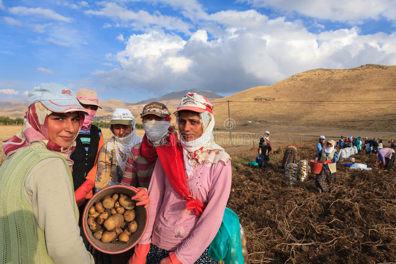 Saisonarbeitnehmerinnen stockfotos
