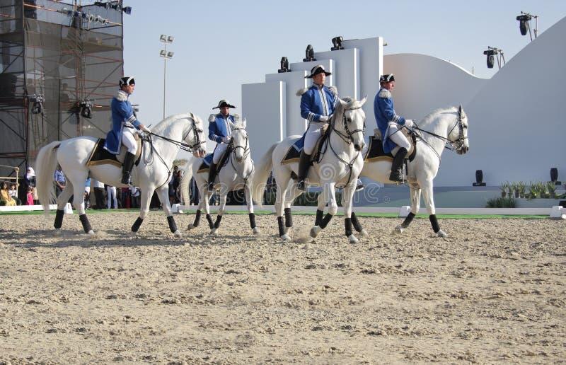 Download Sakhir, Bahrain Nov 26: Lipizzaner Stallions Show Editorial Photography - Image: 17191512