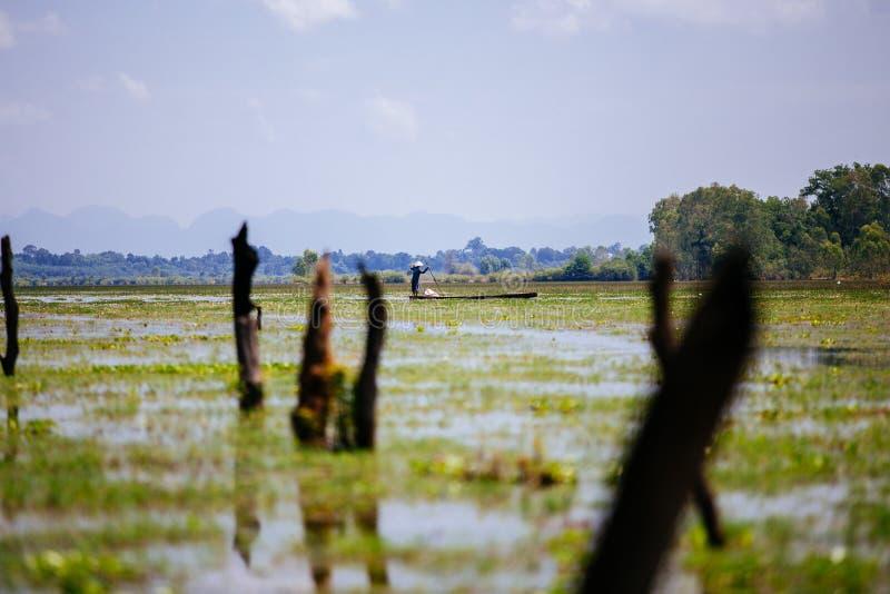 Sakon Nakhon, Tailândia - 16 de setembro de 2019 : Trabalho duro dos pescadores Trabalhos de manhã em pântano foto de stock royalty free