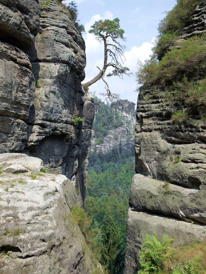 Nationaal Park Sächsische Schweiz  Wikipedia