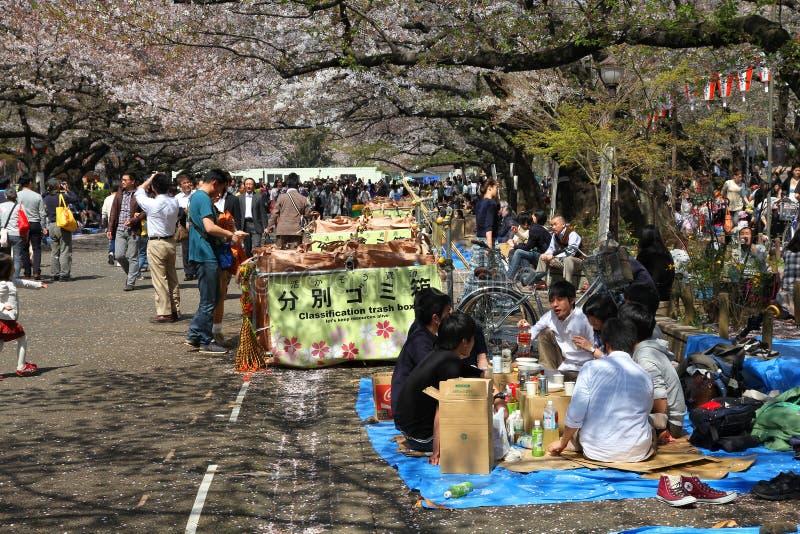 Sakura à Tokyo photos stock