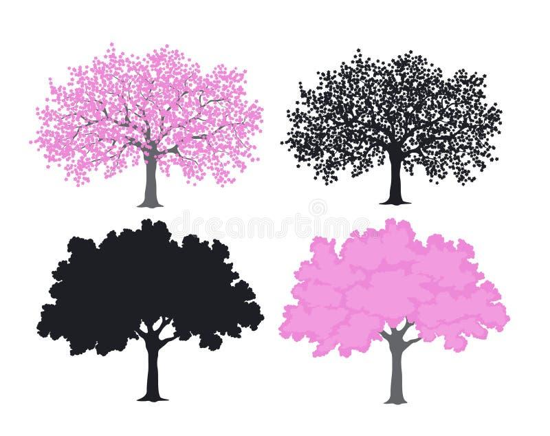 Sakura, árbol de la flor de cerezo en color y siluetas stock de ilustración