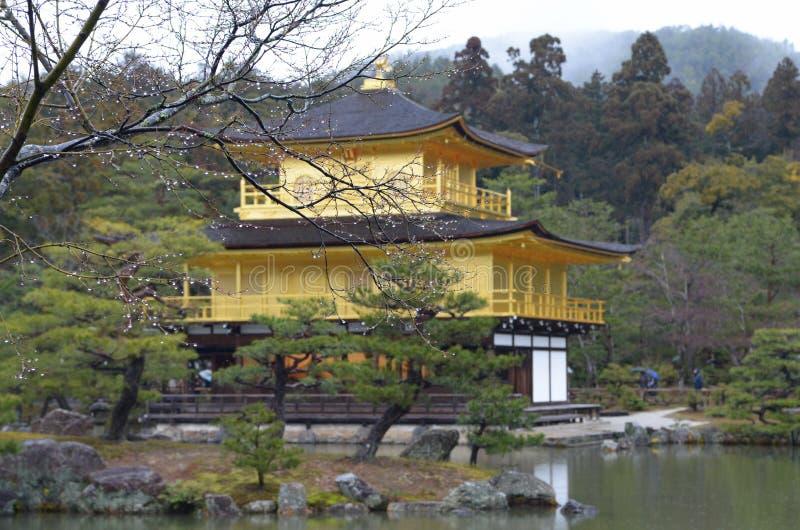 Sakura świątynia dłoni fotografia royalty free