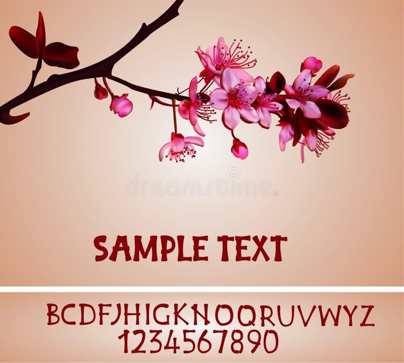 sakura ανθών ελεύθερη απεικόνιση δικαιώματος
